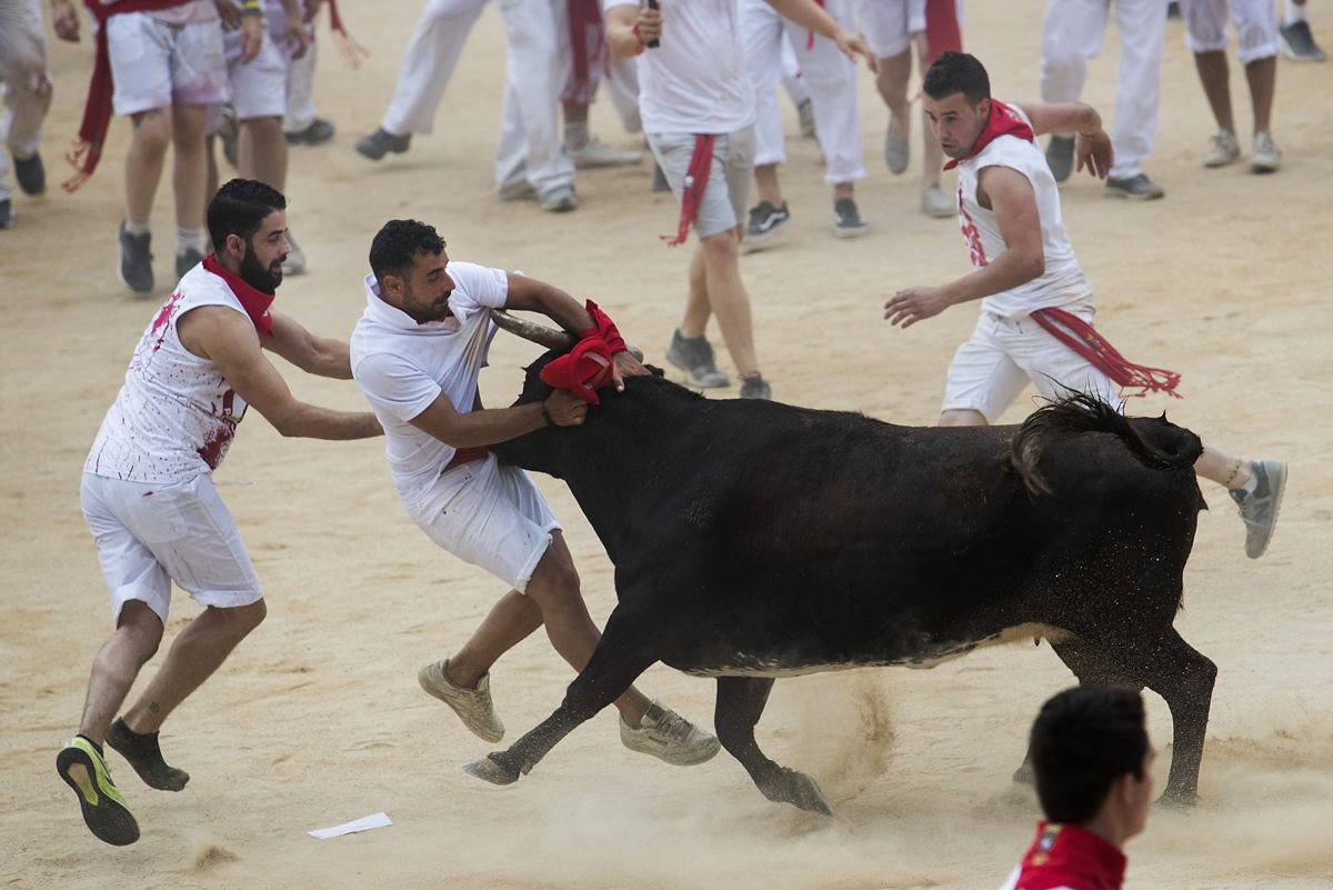 A reveller is tossed by a heifer during the first bullrun of the San Fermin festival in Pamplona, northern Spain on July 7, 2019. - On each day of the festival six bulls are released at 8:00 a.m. (0600 GMT) to run from their corral through the narrow, cobbled streets of the old town over an 850-meter (yard) course. Ahead of them are the runners, who try to stay close to the bulls without falling over or being gored. (Photo by JAIME REINA / AFP)