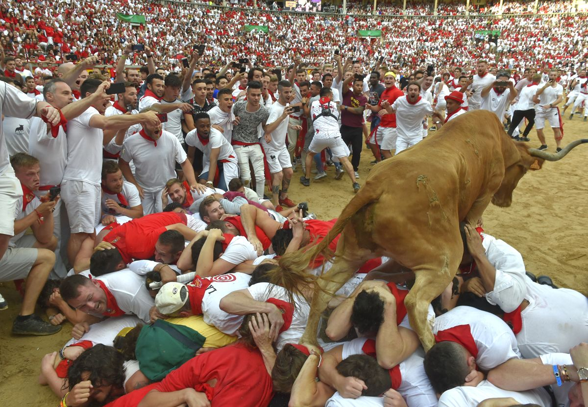 A heifer bull jumps over participants in the bullring after the second bullrun the San Fermin festival in Pamplona, northern Spain on July 8, 2019. - On each day of the festival six bulls are released at 8:00 a.m. (0600 GMT) to run from their corral through the narrow, cobbled streets of the old town over an 850-meter (yard) course. Ahead of them are the runners, who try to stay close to the bulls without falling over or being gored. (Photo by ANDER GILLENEA / AFP)