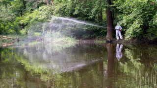 Miskolc, 2017. június 6.A Miskolci Városgazda Nonprofit Kft. munkatársa szúnyogirtó vegyszert permetez Miskolc határában a Juhdöglő völgyi-tónál 2017. június 6-án. A földi biológiai irtás környezetbarát, a vegyszert a szúnyoglárva tenyészőhelyén közvetlenül a rovarok élőhelyére permetezik, amely a szúnyoglárva elpusztítását követően teljesen lebomlik, ezért a környezetet nem károsítja.MTI Fotó: Vajda János