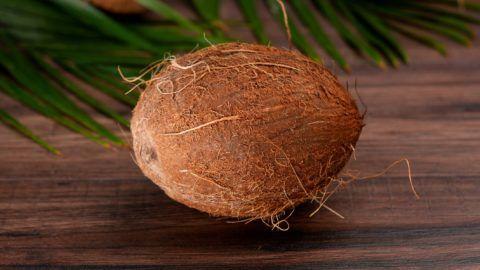 Coconut in a cut.