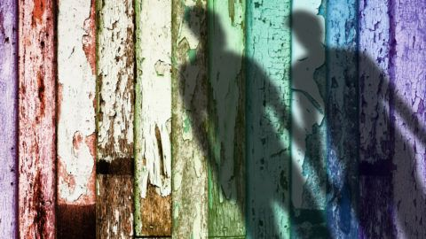 Rainbow Color Weathered Wood, Shadow Shape of Gay