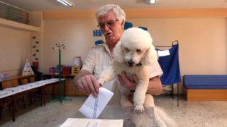 Athén, 2019. július 7. Kutyával a kezében voksol egy férfi az elõrehozott parlamenti választásokon Athénban 2019. július 7-én. MTI/EPA/ANA-MPA/Oresztisz Panajotu