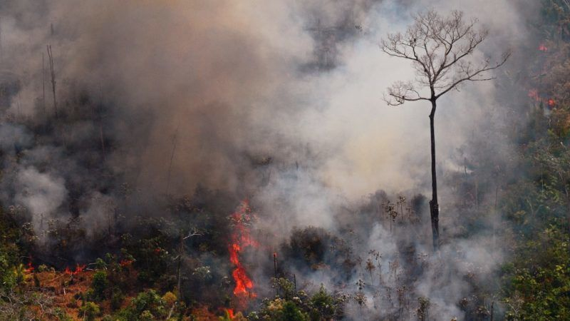 Aerial picture showing a fire raging in the Amazon rainforest about 65 km from Porto Velho, in the state of Rondonia, in northern Brazil, on August 23, 2019. - Bolsonaro said Friday he is considering deploying the army to help combat fires raging in the Amazon rainforest, after news about the fires have sparked protests around the world. The latest official figures show 76,720 forest fires were recorded in Brazil so far this year -- the highest number for any year since 2013. More than half are in the Amazon. (Photo by Carl DE SOUZA / AFP)