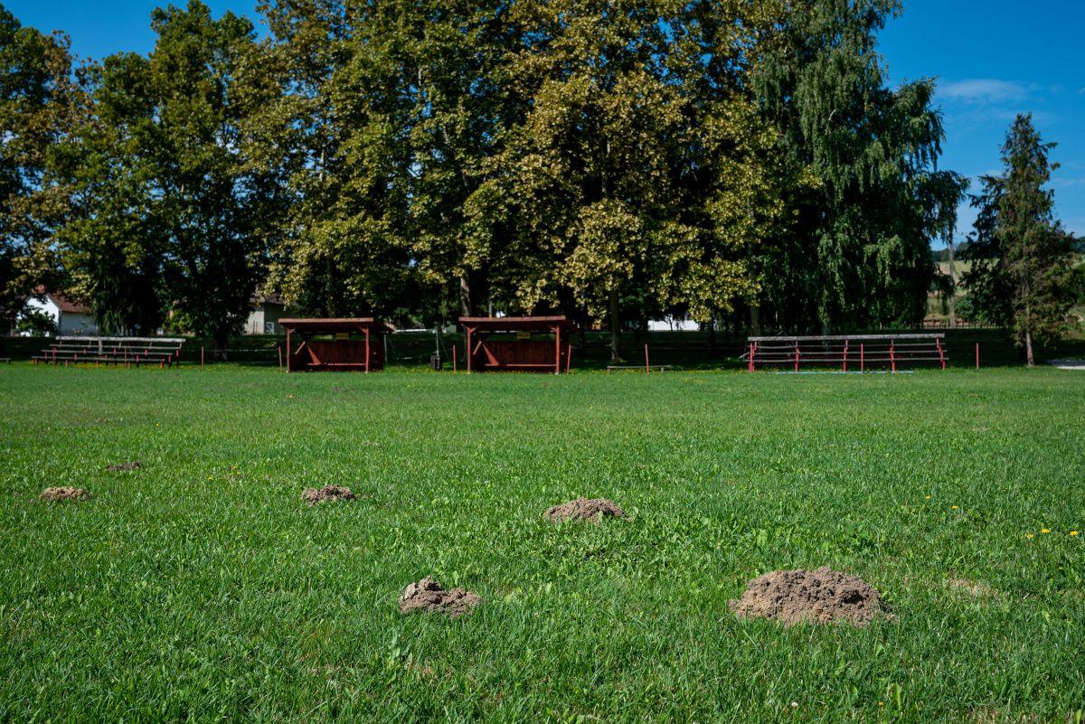 Image: 73913179, Riport Somogybabodról, ahol a statisztikák szerint a legtöbb jogosítványt vették el lakosságarányosan., Place: Somogybabod, Hungary, Model Release: No or not aplicable, Property Release: Yes, Credit: smagpictures.com