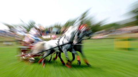 Hortobágy, 2012. július 7. Egy résztvevõ a 46. Hortobágyi Lovasnapok fogathajtó versenyén. A magyar lovaskultúra nemes hagyományainak ápolása a célja a nagyhírû Hortobágyi Lovasnapoknak. MTVA/Bizományosi: Oláh Tibor  *************************** Kedves Felhasználó! Az Ön által most kiválasztott fénykép nem képezi az MTI fotókiadásának, valamint az MTVA fotóarchívumának szerves részét. A kép tartalmáért és a szövegért a fotó készítõje vállalja a felelõsséget.