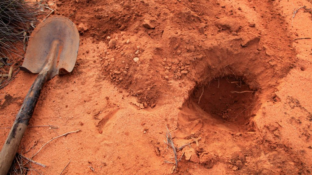 Using shovel for digging holes