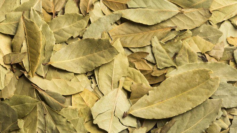 Dried bay leaves - Laurus nobilis. Wood background