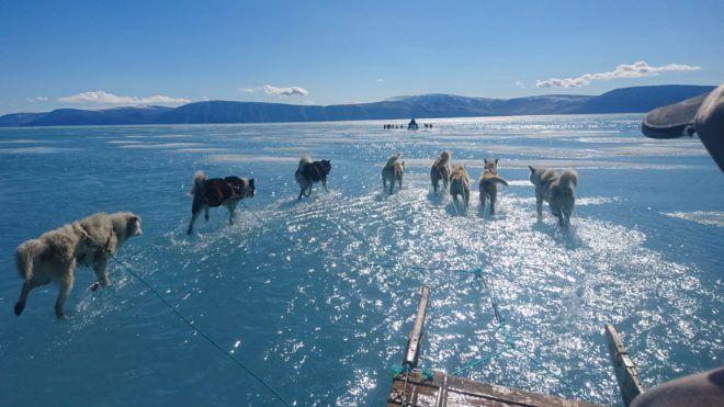 Inglefield-öböl, 2019. június 19. A Dán Meteorológiai Intézet által közreadott képen a tenger part menti olvadó jegén haladnak kutyaszánok Grönland északnyugati részén 2019. június 13-án. A szokatlan meleg miatt gyorsan felhalmozódott az olvadékvíz a felszínen rekedt, mert a jégen lévõ nagyon kevés repedés miatt nem tudott levezetõdni a szilárd jégrõl. MTI/EPA/Steffen M. Olsen