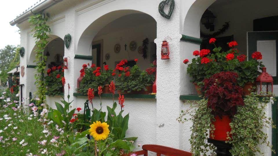 Virágözönben pompázik a tiszai falu minden portája