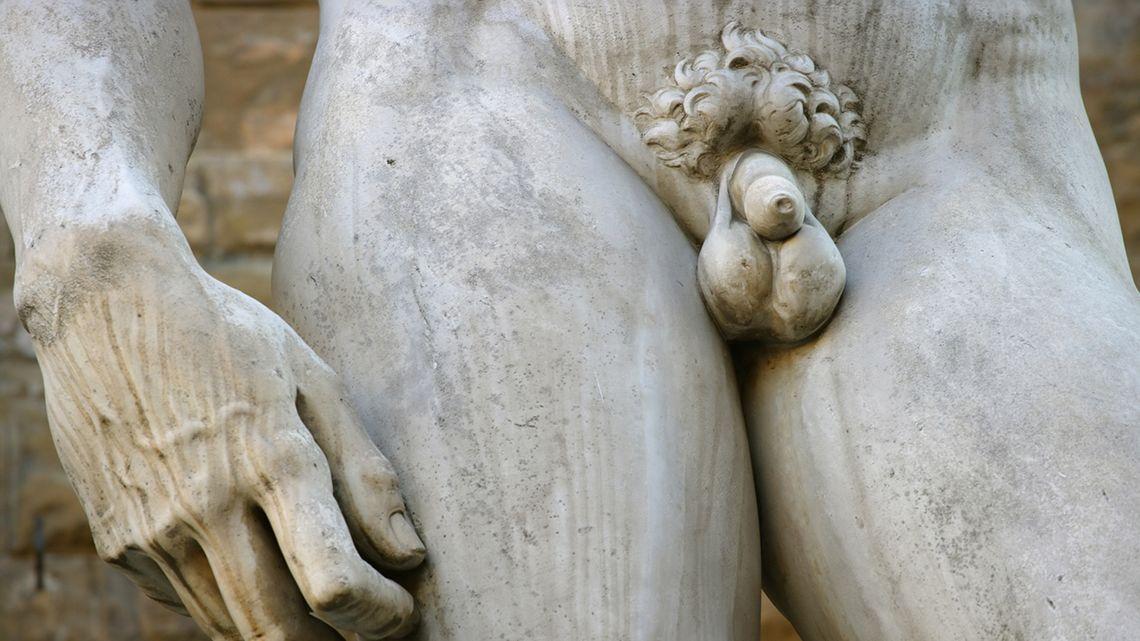 a pénisz teljessége és hossza