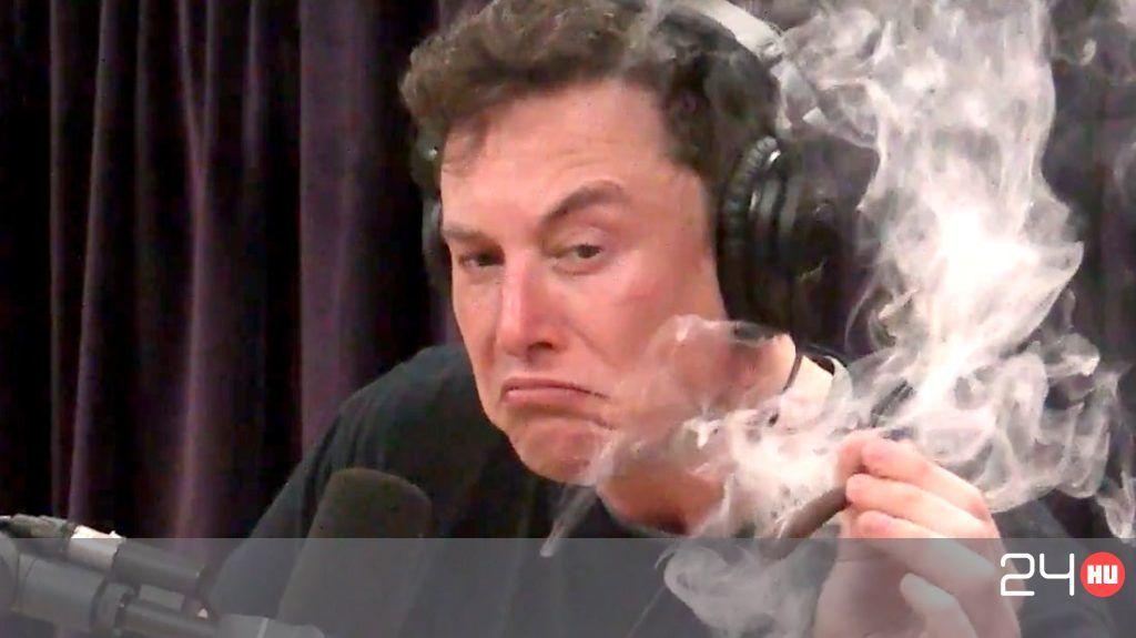 Fizetett a NASA, hogy ne füvezzenek a SpaceX-nél | 24.hu