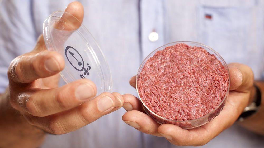 Nem kell állatot ölnünk ahhoz, hogy húshoz jussunk