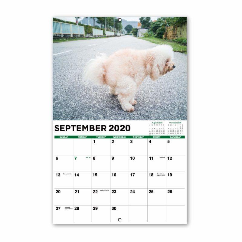 A poszterek mé 995Ft. Nagy cicik szexi naptár - 2020.