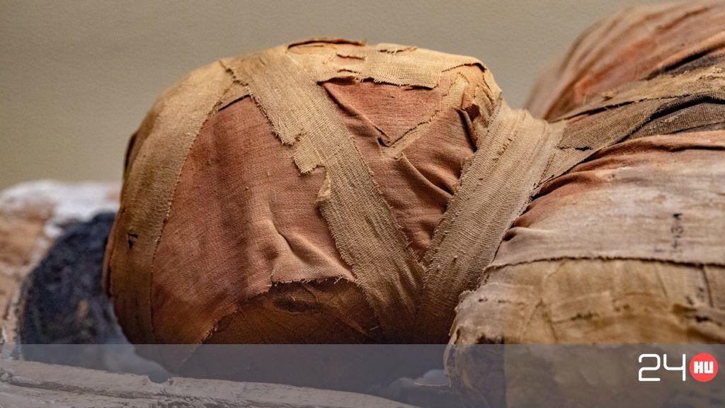 Múmia és prostatitis Vélemények A krónikus prosztatitis jelei férfiakban