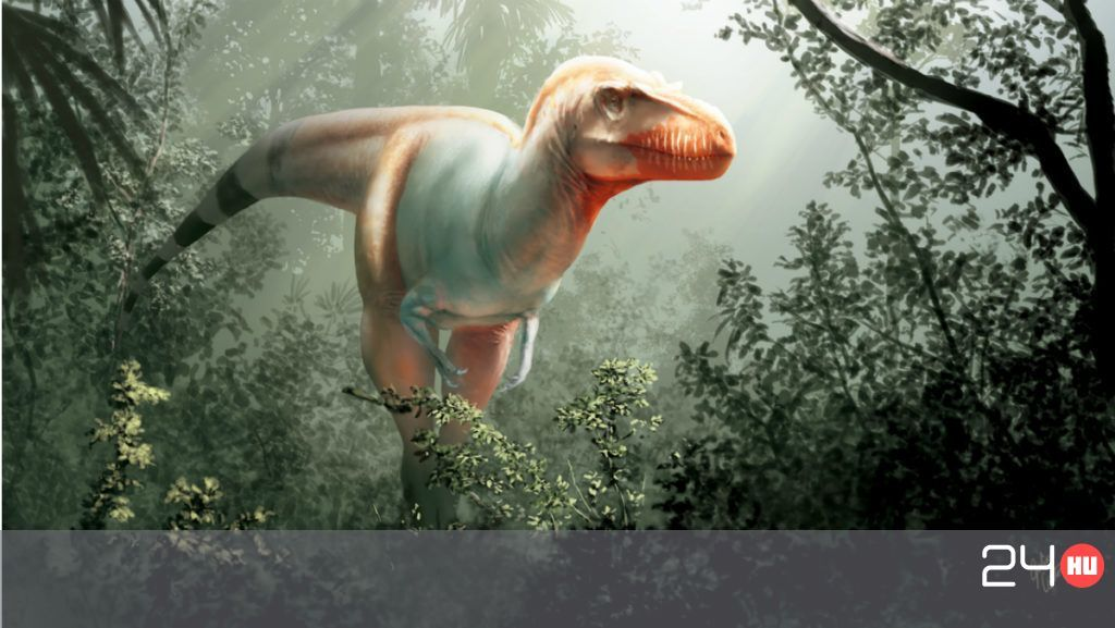 dinoszaurusz pénisz gyógynövényes kezelés merevedési zavar