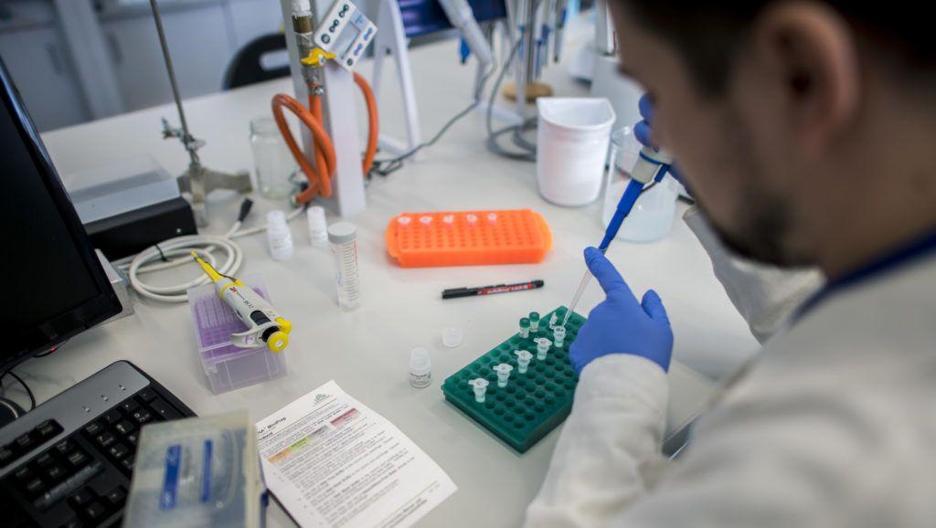 Több helyről érkezhetett a koronavírus Magyarországra