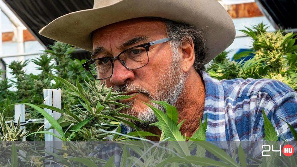 James Belushi kannabiszfarmja külön műsort kap az amerikai Discovery-n | 24.hu