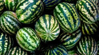 görögdinnye pikkelysömör kezelése)