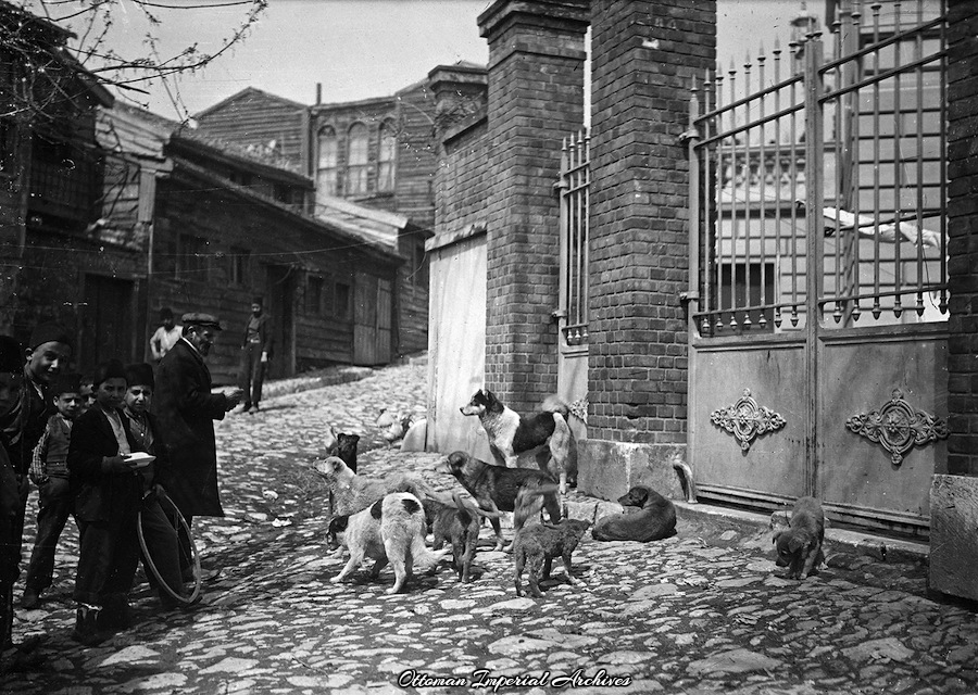 Törökországi életkép a századfordulóról.