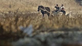 Tisita, 2011. december 2. Lovas kocsi megy a Susita folyó kiszáradt medrében, a román fõvárostól, Bukaresttõl 200 km-re északkeletre fekvõ Tisita falu közelében. A több hónapos csapadékhiány miatt az évtizedek óta legsúlyosabb aszály sújtja Közép-Európa és a Balkán több térségét, a folyók vízszintjei rekordmélységekbe süllyedtek, Romániában pedig a következõ évi búzatermést veszélyezteti a csapadékhiány. (MTI/AP/Vadim Ghirda)