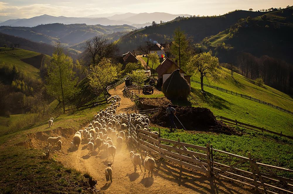 Fotó: catalin Caciuc