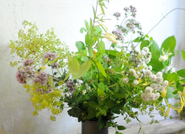Fotó: gardeningforums.com