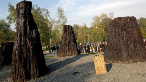 Ipolytarnóc, 2007. október 12. A 8 millió éves mocsári ciprusok a megújult Ipolytarnóci Õsmaradványok Természetvédelmi Terület látogatóközpontja elõtt. MTI Fotó: H. Szabó Sándor