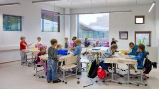 Saunalahti school in Espoo, FinlandPhoto by Andreas Meichsner for Verstas architects