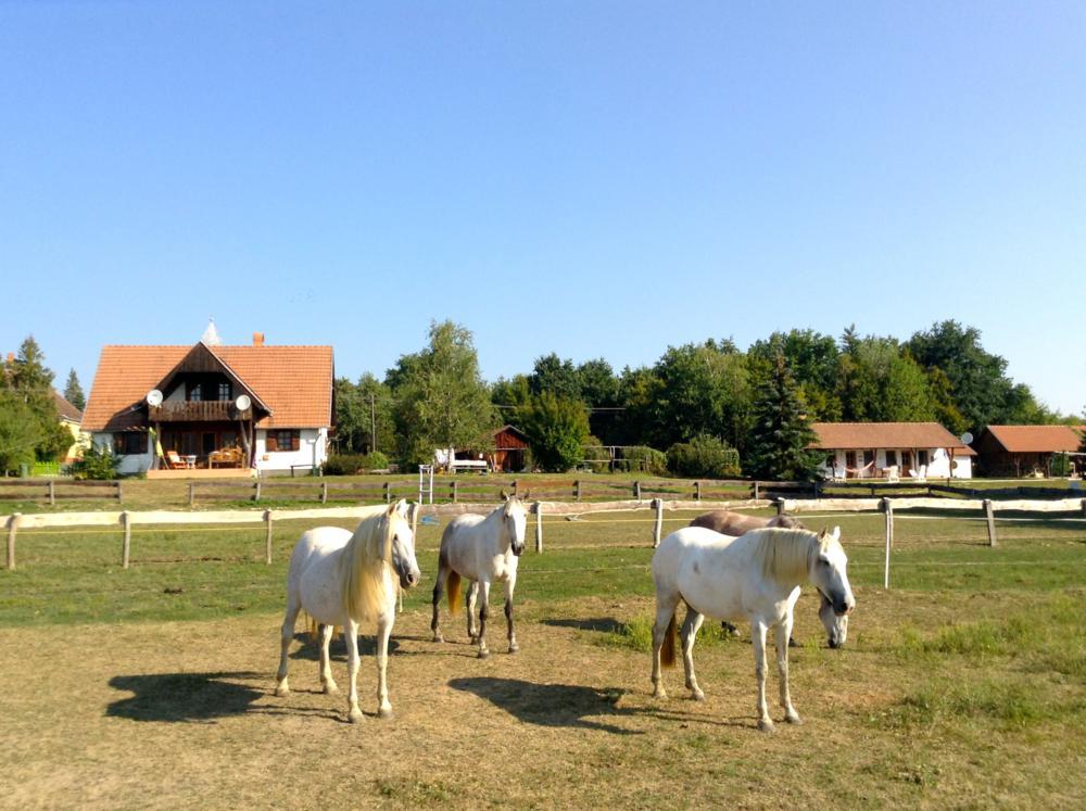 Fotó: kerczabiofarm.hu