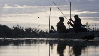 Tiszaalpár, 2012. május 26. Horgászok csónakból horgásznak hajnalban a Tisza holtágán, Tiszaalpár határában. MTI Fotó: Ujvári Sándor