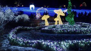 Gapjong, 2016. december 19. Fényfûzérekkel díszítették fel a Reggeli Nyugalom Kertje arborétum növényzetét a közelgõ karácsony alkalmából a dél-koreai Gapjongban 2016. december 19-én. (MTI/EPA/Dzson Hon Kjun)