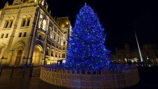 Budapest, 2016. december 1. Karácsonyfa díszkivilágításban a Kossuth téren, a Parlament elõtt 2016. december 1-jén. MTI Fotó: Lakatos Péter
