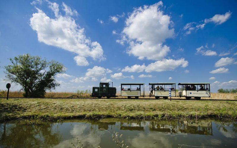 Hortobágy, 2012. május 5. Kisvonat halad a Hortobágyi Kisvasút vonalán. A Hortobágyi Nemzeti Park területén található halastavak környékén üzemelõ vonalat eredetileg a halgazdaság kiszolgálására hozták létre 1915-ben, a menetrend szerinti forgalom 2007 tavaszán indult el. A vasútvonal melletti tanösvényeken és kilátókon lehetõség nyílik a térségben fészkelõ és átvonuló madarak természetes környezetben történõ megfigyelésére. MTI Fotó: Czeglédi Zsolt