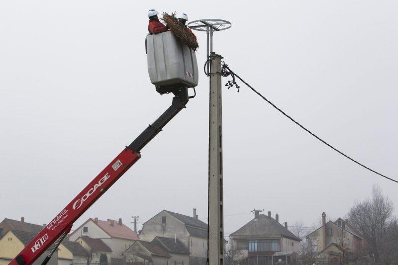 Semjénháza, 2017. február 16. Az áramszolgáltató szakemberei mûfészket szerelnek fel egy villanyoszlopra Semjénházán 2017. február 16-án. Egy gólya már több éve a faluban telel, ezért az áramszolgáltató szakemberei a Magyar Madártani és Természetvédelmi Egyesület és a Balaton-felvidéki Nemzeti Park együttmûködésével ezen a napon egy mûfészket szereltek a fészekfoglalási idõszak elõtt egy villanyoszlopra. A gólyát a hidegebb napokon a helybéliek etetik. MTI Fotó: Varga György