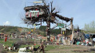Pirot, 2016. március 31. A 65 éves szerb Panta Petrovic vezeti kecskenyáját fára épített kunyhója elõtt a délkelet-szerbiai Pirot város közelében lévõ tanyáján 2016. március 30-án. (MTI/EPA/Djordje Savic)