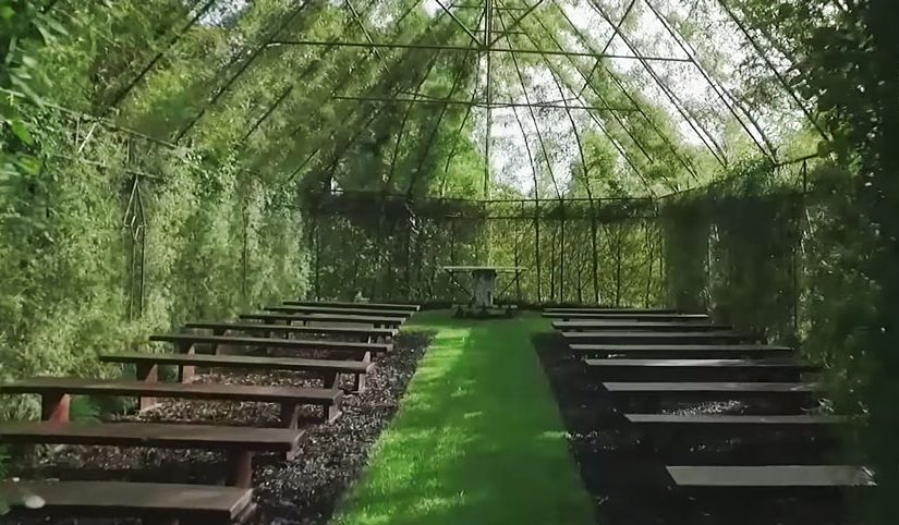 tree-church-nature-installation-barry-cox-new-zealand-8.jpg