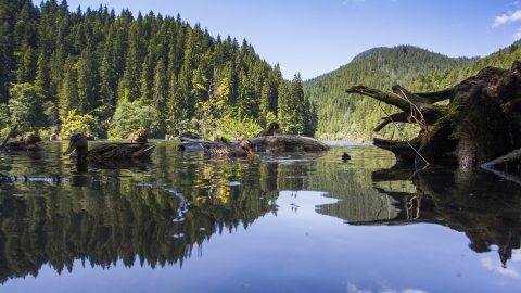 Gyergyószentmiklós, 2013. augusztus 5. A Gyilkos-tó a Hargita megyei Hagymás-hegységben, Gyergyószentmiklóstól 25 kilométerre 2013. augusztus 5-én. MTI Fotó: Varga György