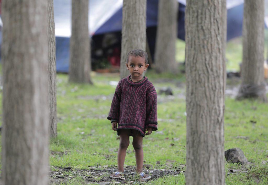 Szrinagar, 2017. május 17. A bakarval kasmíri nomád törzshöz tartozó gyerekek  egyike nyárfák között áll Dzsammu és Kasmír indiai szövetségi állam nyári fõvárosa, Szrinagar külvárosában 2017. május 17-én. A Himalája és a Pir Pandzsal-hegység közti területen õshonos pásztornép tagjai a téli hónapokban a melegebb, a tavaszi és nyári hónapokban a hûvösebb tájak felé vándorolnak. (MTI/EPA/Faruk Hán)
