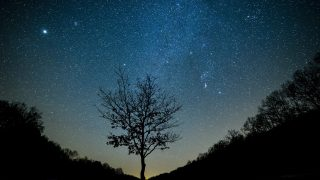 Felsõtárkány, 2015. február 13. A Tejút látszik az égbolton egy fa felett Felsõtárkány közelébõl fotózva 2015. február 12-én este. A csillagoségbolt-park cím megszerzésének érdekében a Bükki Nemzeti Park fényszennyezettségének felmérését végzik. Magyarországon eddig a Zselici Tájvédelmi Körzet és Hortobágyi Nemzeti Park nyerte el a nemzetközi csillagoségbolt-park címet. MTI Fotó: Komka Péter