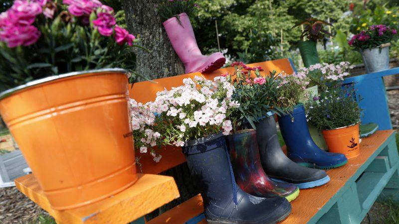 Berlin, 2017. július 16. Használt gumicsizmákba ültetett virágok a berlini Vattenfall városi közösségi kertben 2017. július 14-én. A Vattenfal skandináv energetikai cég két kommunális zöldterületet nyitott meg Berlinben, ahol a városlakók egy földterületen osztozva szabadon kertészkedhetnek, megtermeszthetik maguknak a friss zöldséget, gyümölcsöket és a fûszernövényeket. (MTI/EPA/Felipe Trueba)