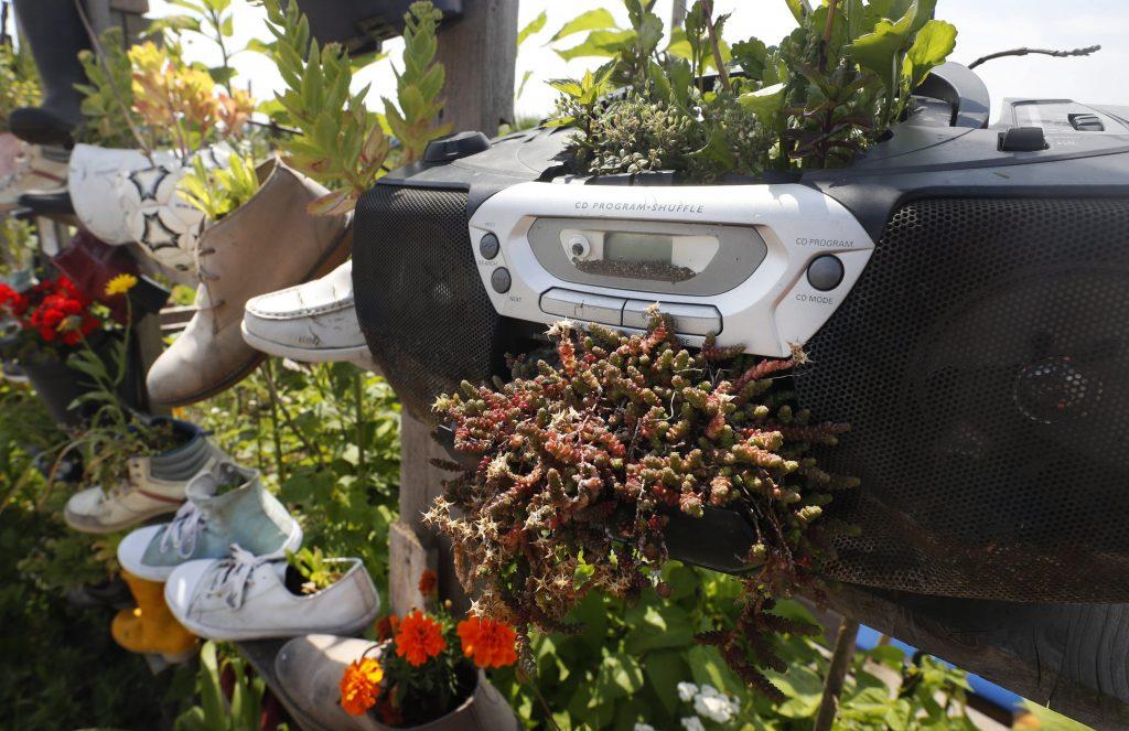 Berlin, 2017. július 16. Kiszuperált rádiósmagnóba ültetett virágok az Allmende-Kontor városi közösségi kertben a berlini Tempelhof repülõtér közelében 2017. július 14-én. A Vattenfal skandináv energetikai cég két kommunális zöldterületet nyitott meg Berlinben, ahol a városlakók egy földterületen osztozva szabadon kertészkedhetnek, megtermeszthetik maguknak a friss zöldséget, gyümölcsöket és a fûszernövényeket. (MTI/EPA/Felipe Trueba)
