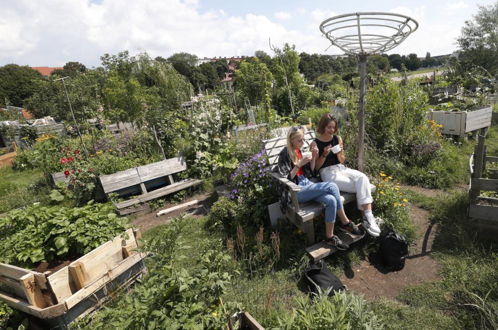 Berlin, 2017. július 16. Fiatal nõk jégkrémet esznek a Allmende-Kontor városi közösségi kertben a berlini Tempelhof repülõtér közelében 2017. július 14-én. A Vattenfal skandináv energetikai cég két kommunális zöldterületet nyitott meg Berlinben, ahol a városlakók egy földterületen osztozva szabadon kertészkedhetnek, megtermeszthetik maguknak a friss zöldséget, gyümölcsöket és a fûszernövényeket. (MTI/EPA/Felipe Trueba)