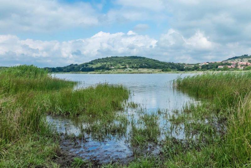 Tihany, 2016. június 20. Az 1997-ben alakult Balaton-felvidéki Nemzeti Parkhoz tartozó Belsõ-tó látképe. A tó környéke 2004-óta az Európai Unió által létrehozott Natura 2000 hálózat része. MTVA/Bizományosi: Faludi Imre  *************************** Kedves Felhasználó! Ez a fotó nem a Duna Médiaszolgáltató Zrt./MTI által készített és kiadott fényképfelvétel, így harmadik személy által támasztott bárminemû – különösen szerzõi jogi, szomszédos jogi és személyiségi jogi – igényért a fotó készítõje közvetlenül maga áll helyt, az MTVA felelõssége e körben kizárt.