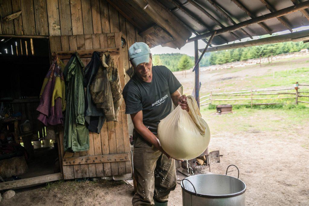 Csobotfalva, 2017. július 10.  Campean Gelu sajtkésztõ pásztor a frissen készült sajtot viszi a kelentébe, ahol alaposabban kisajtolja belõle a maradék sajttejet az erdélyi Csíkszeredához tartozó Csobotfalva közelében 2017. július 6-án. A csíksomlyói juhtartó gazdák áprilisban összegyûjtik az állataikat és azokat pásztorokra bízzák, akik egész nyáron a hegyi legelõkön tartják és gondozzák a juhokat. MTI Fotó: Veres Nándor