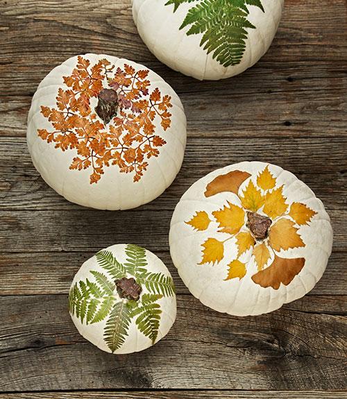 beautifully-painted-pumpkins-featuring-fall-foliage.jpg