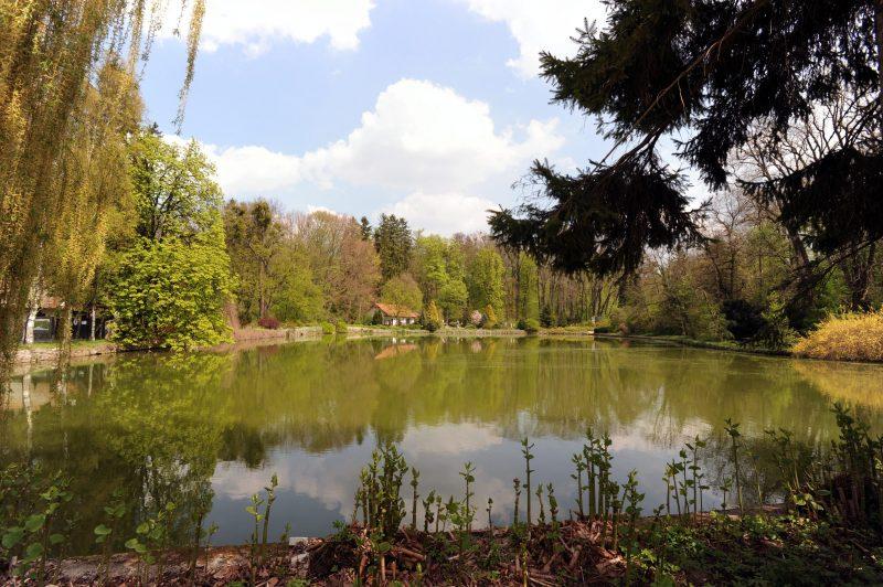 Zirc, 2010. április 25. Mesterséges tó a ciszterciek által alapított 20 hektáros Zirci Arborétumban. MTI Fotó: Manek Attila