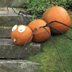 spider-pumpkins.jpg