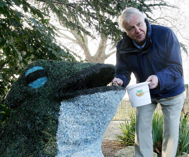 London, 2007. december 20. Sir David ATTENBOROUGH az utolsó simításokat végzi el egy békaszobron a londoni állatkertben 2007. december 20-án. A békaszoborral - amelyet azért állítanak, mert környezet- és állatvédõk a 2008-at a Béka évének nevezték el - a kétéltû állatok válságos helyzetére kívánják felhívni a figyelmet. A betegségek, a természetes lakhely elveszítése, a vegyszerek alkalmazása és a klímaváltozás miatt a kétéltûek számos faját kihalás fenyegeti. (MTI/EPA/ANDY RAIN)