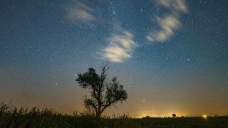 Jankowo, 2016. augusztus 11. A Perseidák meteorraj egyik hullócsillaga (b, felsõ sarok) szeli át a hajnali égboltot a Poznan közelében fekvõ Jankowo felett 2016. augusztus 11-én. (MTI/EPA/Lukasz Ogrodowczyk)