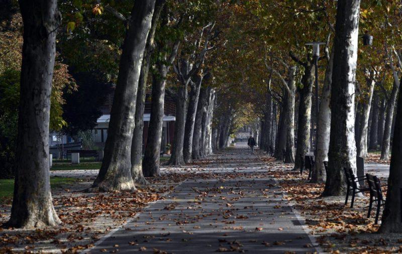 Balatonfüred, 2017. október 18. Sétány az októberi napsütésben a balatonfüredi Balaton-parton 2017. október 18-án. MTI Fotó: Illyés Tibor